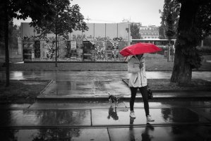 Rainy Day Special! Astrology and/or tarot phone session